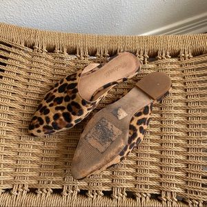 Madewell Shoes - Madewell Remi Mule in Leopard